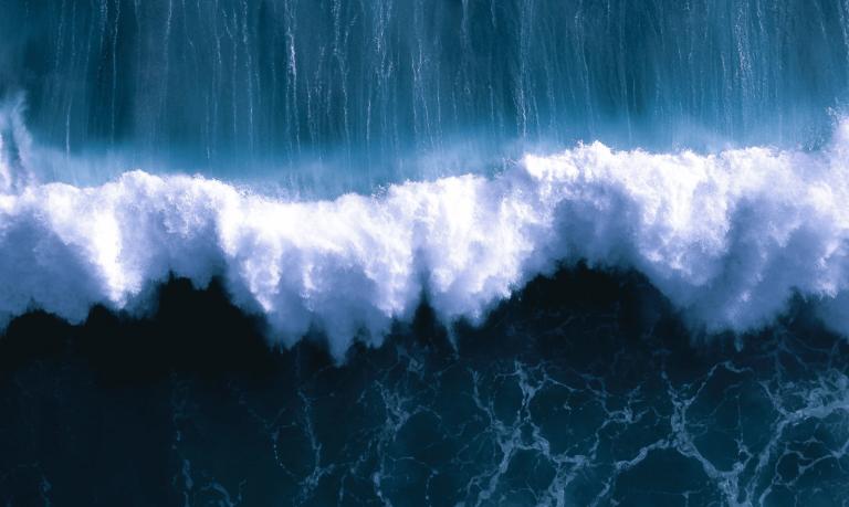 tsunami warning systems save lives